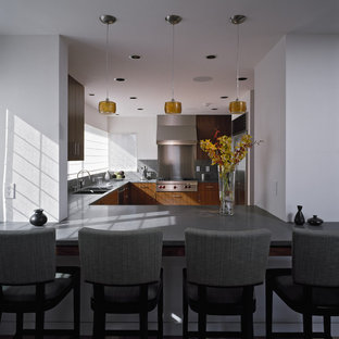 Champagne Color Modern Kitchen Photos Houzz