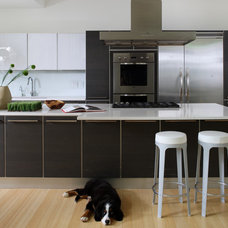 Contemporary Kitchen by Contemporaria