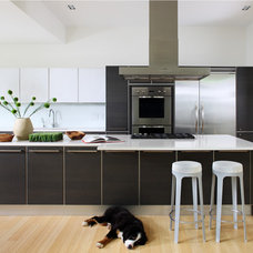 Contemporary Kitchen by Shinberg Levinas Architectural Design