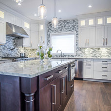 Contemporary Kitchen by Lifestyle Cabinetry