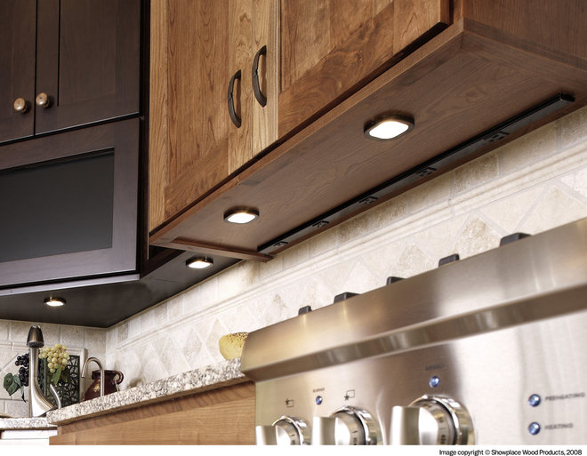Traditional kitchen by showplace wood products for Kitchen cabinet outlet