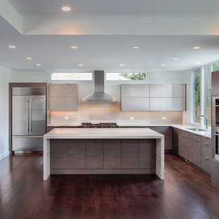 Sleek contemporary kitchen with gray cabinetry