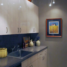 contemporary kitchen by Susan Serra, CKD