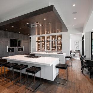 他の地域の大きいコンテンポラリースタイルのおしゃれなキッチン (アンダーカウンターシンク、フラットパネル扉のキャビネット、グレーのキャビネット、クオーツストーンカウンター、パネルと同色の調理設備、無垢フローリング、茶色い床、白いキッチンカウンター) の写真