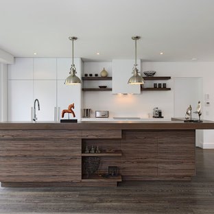 Design ideas for a contemporary galley kitchen in Sydney with flat-panel cabinets, white cabinets and panelled appliances.