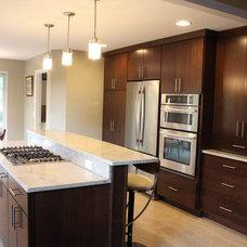 Contemporary Kitchen by Essence Design Studios