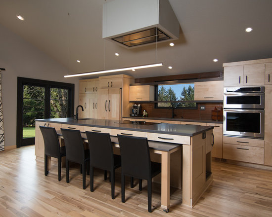 25 best contemporary kitchen ideas designs houzz. Interior Design Ideas. Home Design Ideas