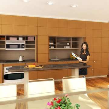 Stealth Kitchen Modules / Panels can have ANY Style