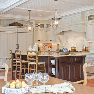 Kitchen - traditional kitchen idea in Boston with raised-panel cabinets, beige cabinets and paneled appliances