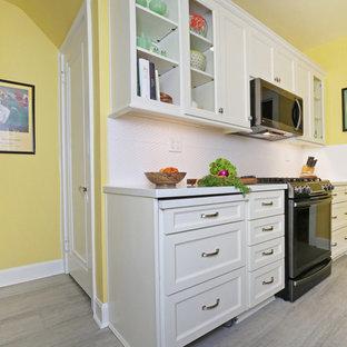 ルイビルの小さいトランジショナルスタイルのおしゃれなキッチン (ダブルシンク、落し込みパネル扉のキャビネット、白いキャビネット、人工大理石カウンター、白いキッチンパネル、セラミックタイルのキッチンパネル、シルバーの調理設備、クッションフロア、アイランドなし、グレーの床、白いキッチンカウンター) の写真