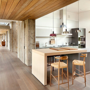 Contemporary kitchen ideas - Example of a trendy kitchen design in Other with flat-panel cabinets, gray cabinets, wood countertops and stainless steel appliances