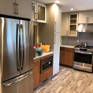 ニューヨークの中サイズのモダンスタイルのおしゃれなキッチン (アンダーカウンターシンク、フラットパネル扉のキャビネット、淡色木目調キャビネット、クオーツストーンカウンター、グレーのキッチンパネル、サブウェイタイルのキッチンパネル、シルバーの調理設備の、セラミックタイルの床、アイランドなし、マルチカラーの床、マルチカラーのキッチンカウンター) の写真