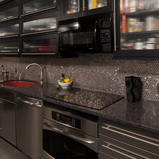 Contemporary Kitchen by Teknika Design Group