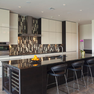 ss kitchen cabinets two tone backsplash houzz 2451