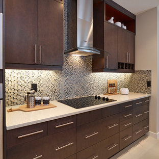 エドモントンの大きいコンテンポラリースタイルのおしゃれなキッチン (アンダーカウンターシンク、フラットパネル扉のキャビネット、濃色木目調キャビネット、御影石カウンター、マルチカラーのキッチンパネル、ガラスタイルのキッチンパネル、シルバーの調理設備の、セラミックタイルの床) の写真
