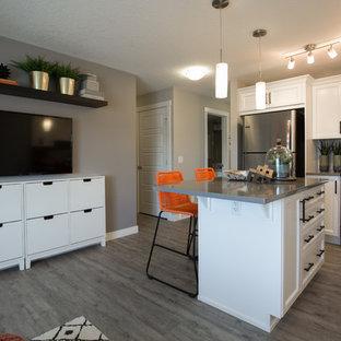 カルガリーの小さいエクレクティックスタイルのおしゃれなキッチン (アンダーカウンターシンク、シェーカースタイル扉のキャビネット、白いキャビネット、クオーツストーンカウンター、セラミックタイルのキッチンパネル、シルバーの調理設備の、クッションフロア、グレーの床、グレーのキッチンカウンター) の写真