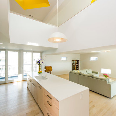 Inspiration for a scandinavian light wood floor open concept kitchen remodel in DC Metro with a double-bowl sink, flat-panel cabinets, light wood cabinets and an island