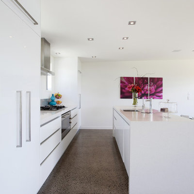 Example of a minimalist galley eat-in kitchen design in Hamilton with flat-panel cabinets, white cabinets and paneled appliances
