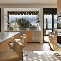 modern kitchen by the construction zone, ltd.