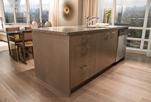 Modern Kitchen Cabinets by AyA Kitchens and Baths