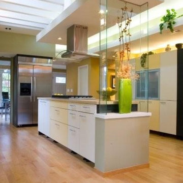 The Modern ALNO Kitchen in 1895 Victorian House at Old Palo Alto