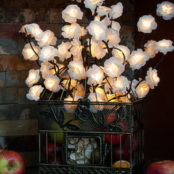 The Firefly Garden - The Orchard Kitchen - The Orchard Kitchen is a bounty of illumination, reminiscent of summer's harvest. A rustic birdcage proffers delicate, illuminated Roses, filled with a colorful medley of fruits. This decorative accent piece works perfectly in a kitchen, lighting those midnight trips to the fridge!