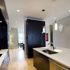 Contemporary Kitchen by Fifth Element Homes