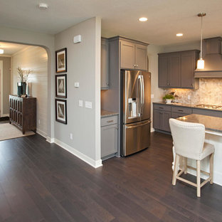 Modern kitchen pictures - Example of a minimalist dark wood floor kitchen design in Minneapolis with gray cabinets, granite countertops, beige backsplash, stainless steel appliances, an island and a double-bowl sink