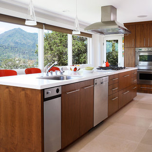 This is an example of a midcentury kitchen in San Francisco with flat-panel cabinets, dark wood cabinets and stainless steel appliances.