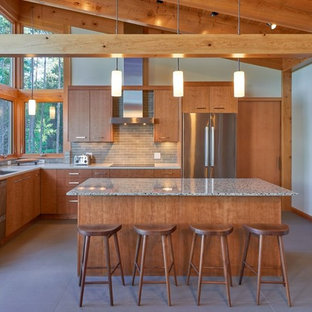 75 Beautiful Kitchen With Light Wood Cabinets And Gray ...