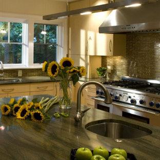Kitchen - contemporary kitchen idea in DC Metro
