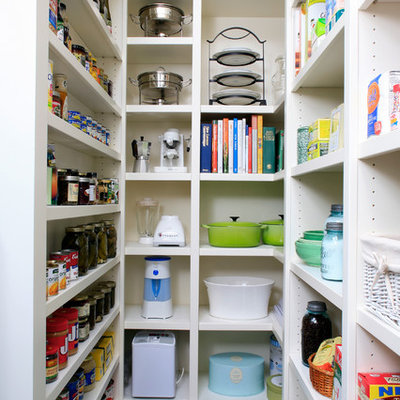 Elegant kitchen pantry photo in Other with open cabinets and white cabinets