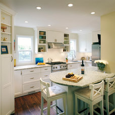 Traditional Kitchen by Purple Turtle Design