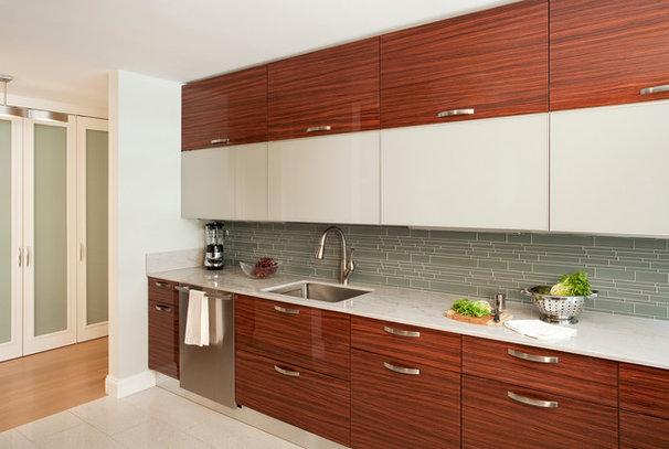 Contemporary Kitchen by darci hether new york