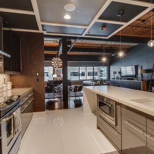 シャーロットの広いインダストリアルスタイルのおしゃれなキッチン (アンダーカウンターシンク、フラットパネル扉のキャビネット、グレーのキャビネット、クオーツストーンカウンター、メタリックのキッチンパネル、ボーダータイルのキッチンパネル、シルバーの調理設備、リノリウムの床、白い床) の写真