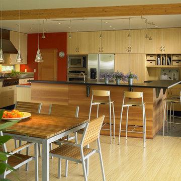 Vashon Residence kitchen