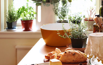 Baker's Delights: Plant Ideas for Bakers and Cooks
