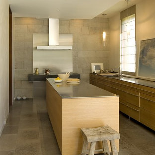 Modern kitchen appliance - Kitchen - modern kitchen idea in San Francisco with a single-bowl sink, flat-panel cabinets, light wood cabinets and an island