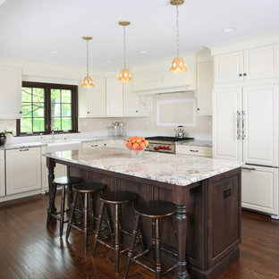 Kitchen Large Traditional L Shaped Dark Wood Floor Idea In Chicago With Raised