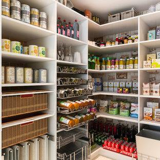 Пример оригинального дизайна: угловая кухня среднего размера в стиле модернизм с кладовкой, белыми фасадами и открытыми фасадами