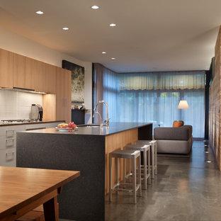 Идея дизайна: кухня в стиле модернизм с столешницей из гранита и техникой из нержавеющей стали