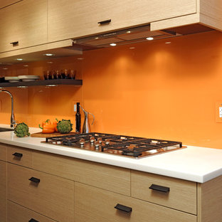 Washington D.C. - Contemporary - Galley Kitchen Design