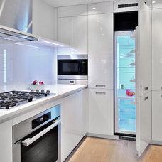 Modern Kitchen by Pedini DC