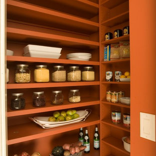 Inspiration for a contemporary kitchen pantry in San Francisco with open cabinets and orange cabinets.