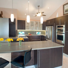 Contemporary Kitchen by ITALIAN KITCHEN CABINETS IN SAN DIEGO