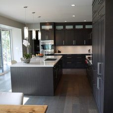 Contemporary Kitchen by Christine Austin Design