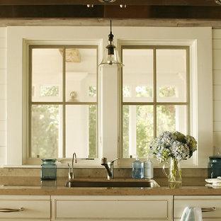 Diseño de cocina comedor de galera, de estilo de casa de campo, grande, sin isla, con fregadero de un seno, armarios con paneles empotrados, puertas de armario blancas, electrodomésticos con paneles y suelo de madera en tonos medios