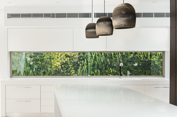 Tropical Kitchen by Tim Ditchfield Architects