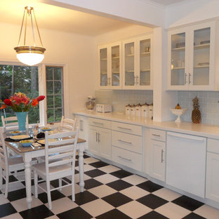 White Glass Cabinet Doors Houzz