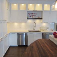Contemporary Kitchen White Kitchen Renovation